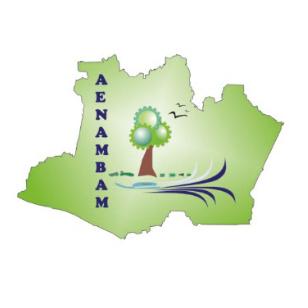 Associação dos Engenheiros Ambientais do Amazonas – AENAMBAM